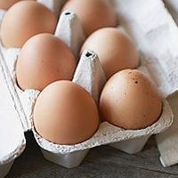 Telur Organik, Lebih Mahal Tapi Tak Lebih Sehat