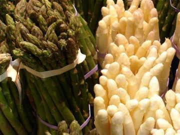 Pasokan Asparagus Berkurang, Asparagus Festivalpun Batal