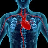 Bisakah Katup Jantung Bocor Sembuh Tanpa Operasi?