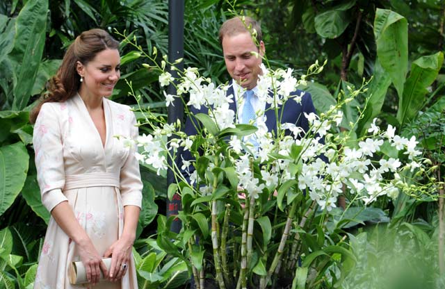 William & Kate Kunjungi Singapore Botanical Gardens