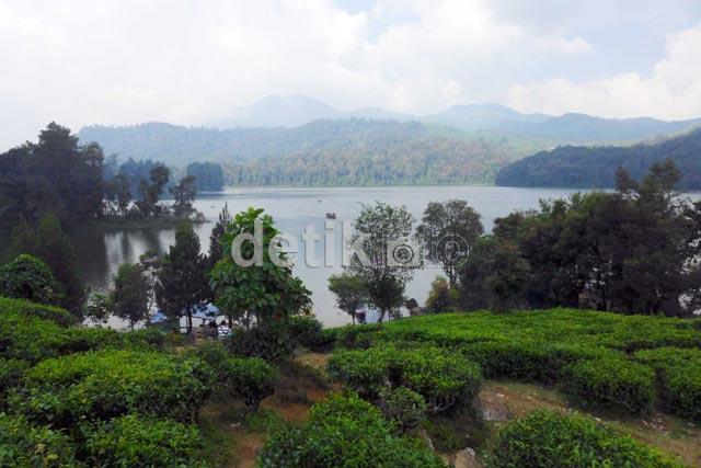 Situ Patenggang, Danau di Tengah Kebun Teh