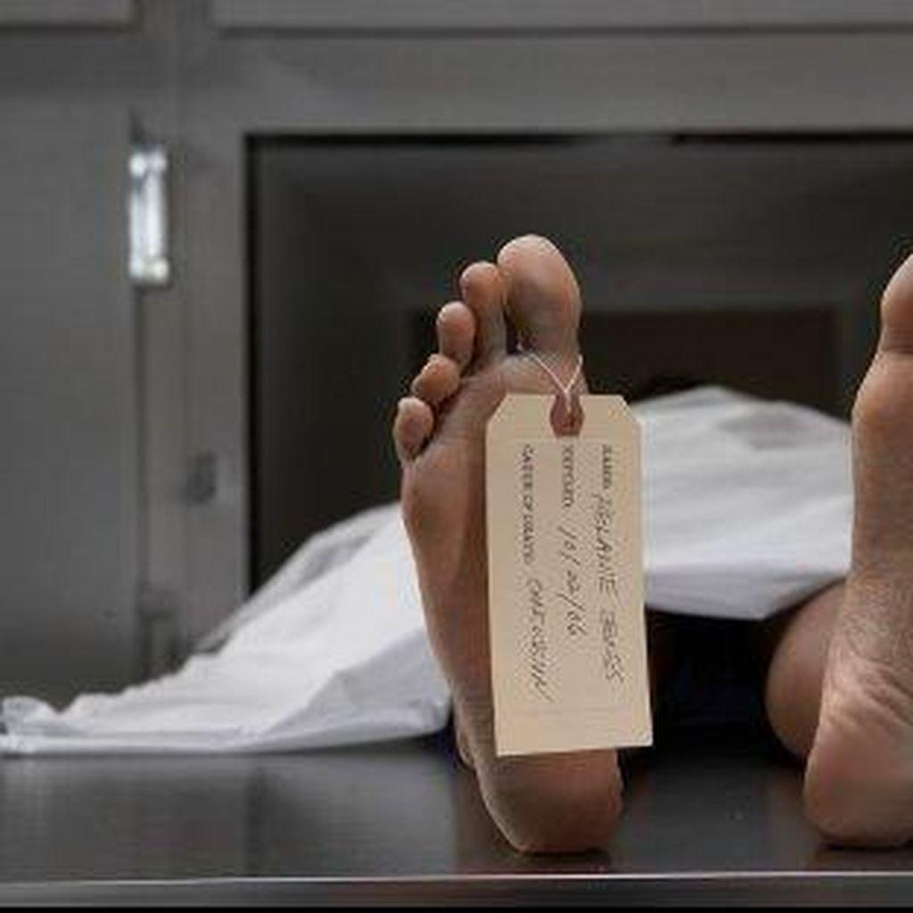 Tak Semua Ringan, Ada Kasus Antraks yang Bisa Picu Kematian