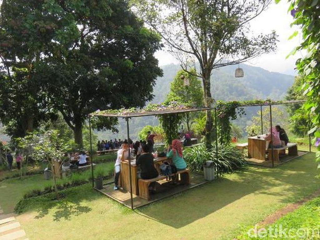 Terletak di bagian utara kota Bandung, Dago Pakar memiliki kafe dengan pemandangan indah. Namanya DPakar, di sini Anda bisa mencicip makanan dengan panorama pinggir tebing plus hamparan pohon pinus.Foto: Istimewa